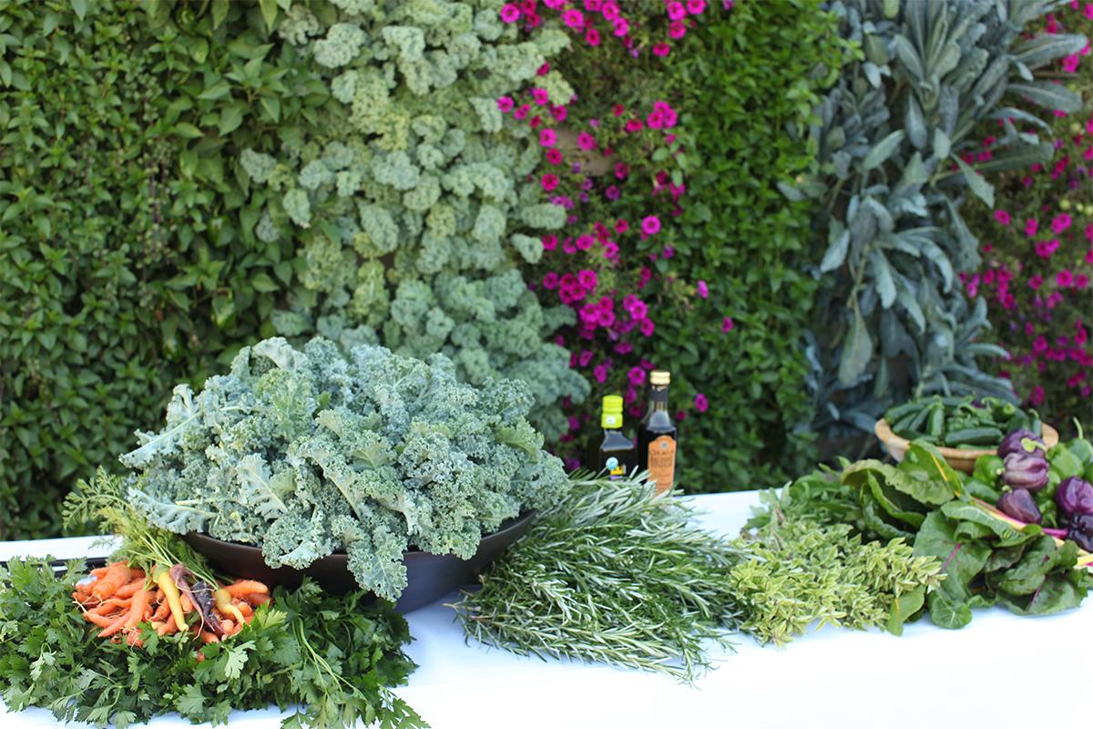 Produce grown from a vertical garden.