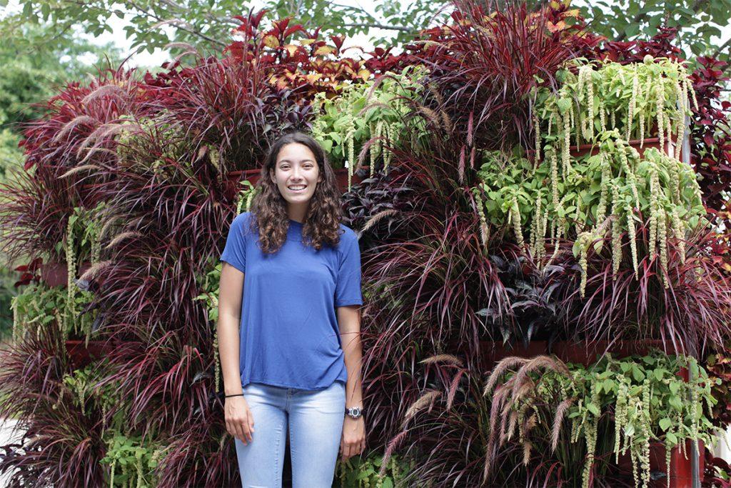 Red Pennisetum and Green Amaranthus Living Garden