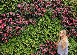 Chevron patterned mixed annuals in a living wall.
