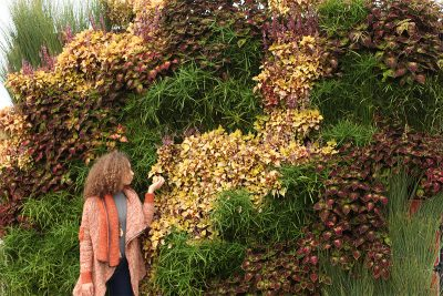 Living walls can be highly effective marketing tools, creating interest and signaling corporate values.