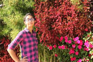An Explosion of Bright Annuals in Vertical Garden