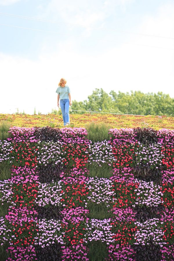 Woman standing on building with planted roof and living wall.