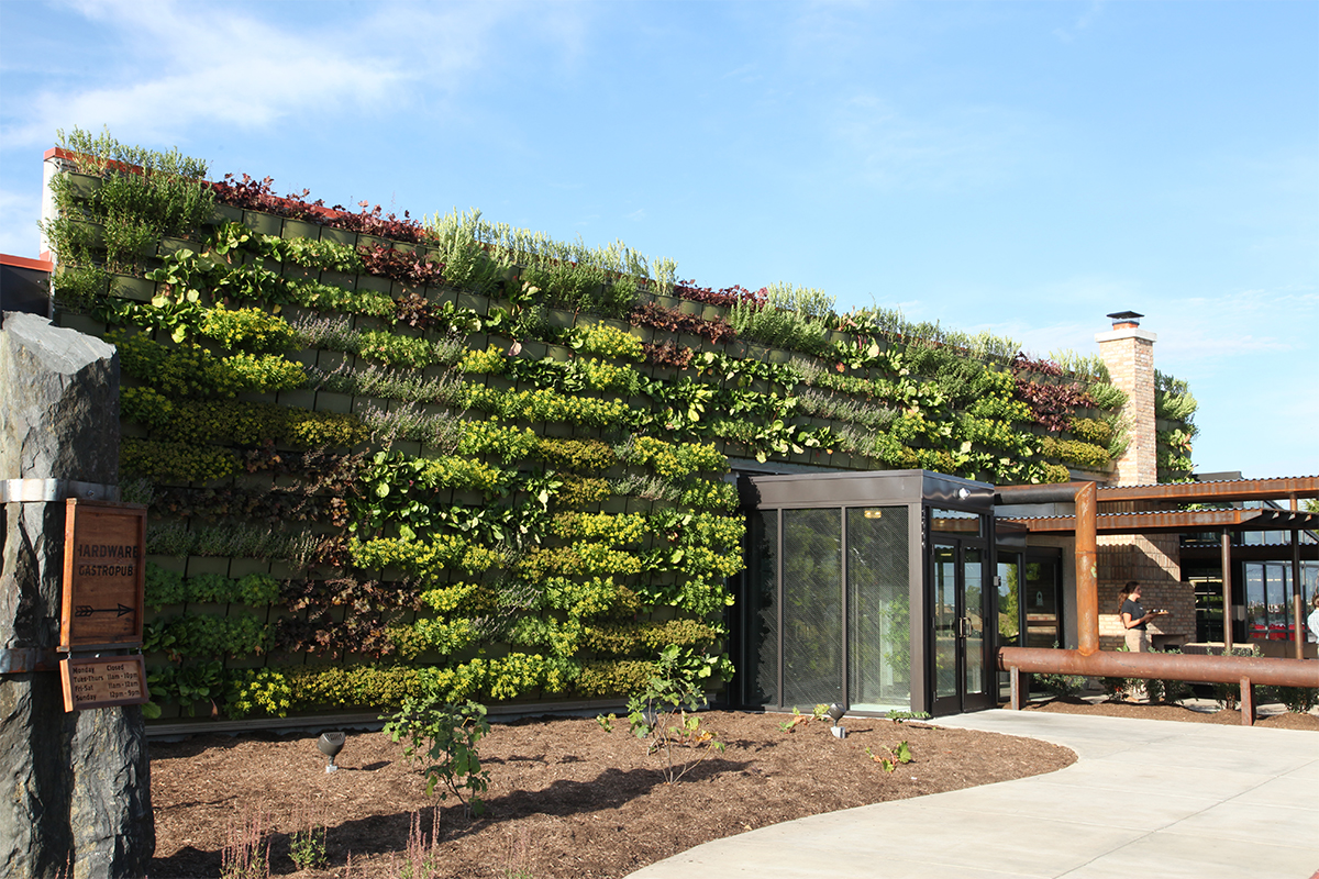 Green, planted wall at Hardware Gastropub in North Aurora, Illinois.