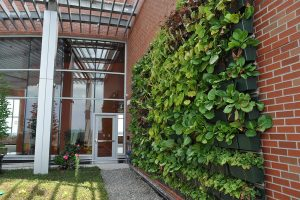 Jersey Shore Medical Center Hope Tower Perennial Living Walls