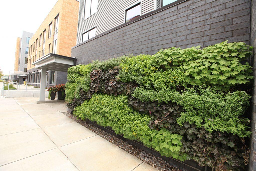 234 Market Apartments' Green Wall