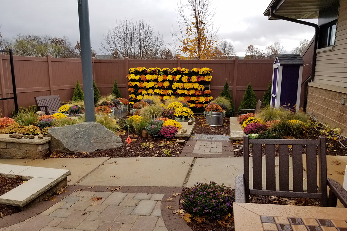 Meriter Gathering Garden with Fall Mums planted in green wall.