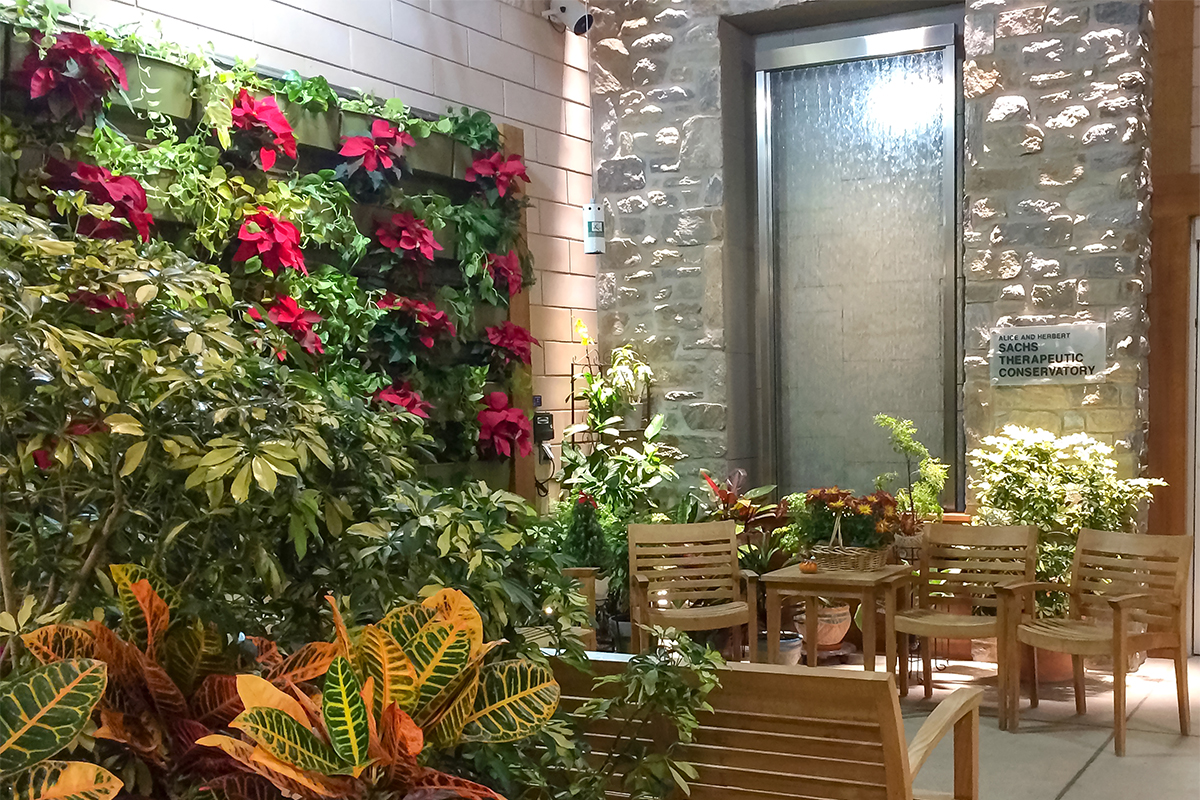 MossRehab Sacks Conservatory's vertical garden is a therapeutic tool.