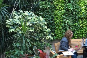 MossRehab Sacks Conservatory - Therapeutic Green Wall