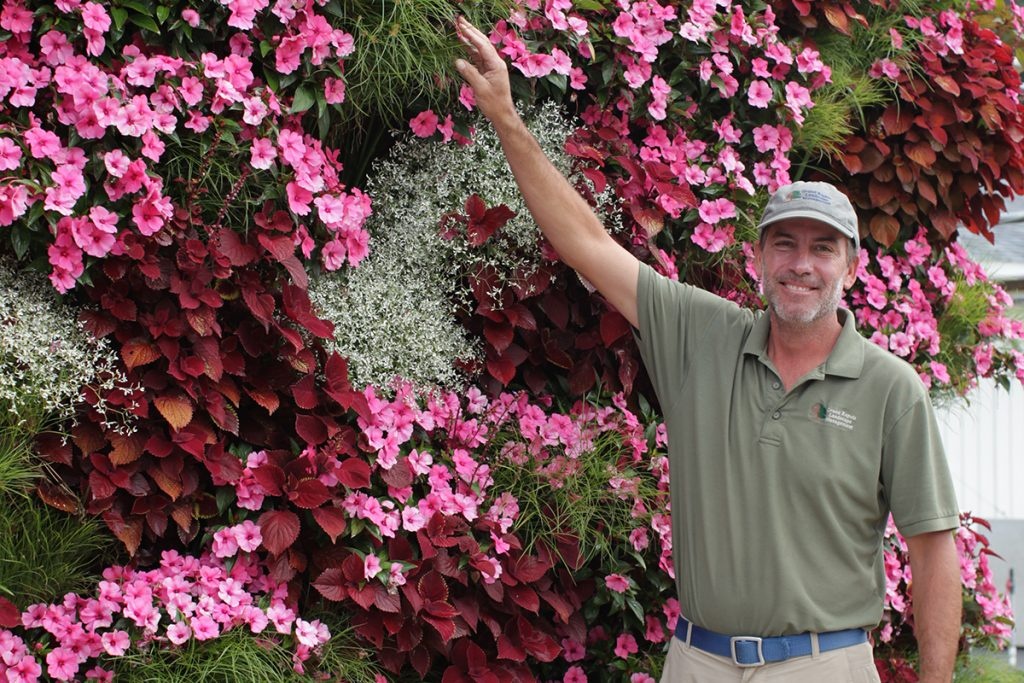 Red, Pink, and White Annuals in Living Wall