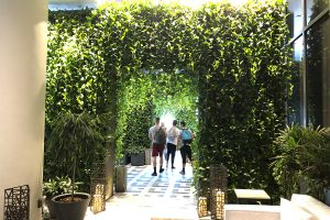 SLS Lux Miami Green Wall Entry Arches