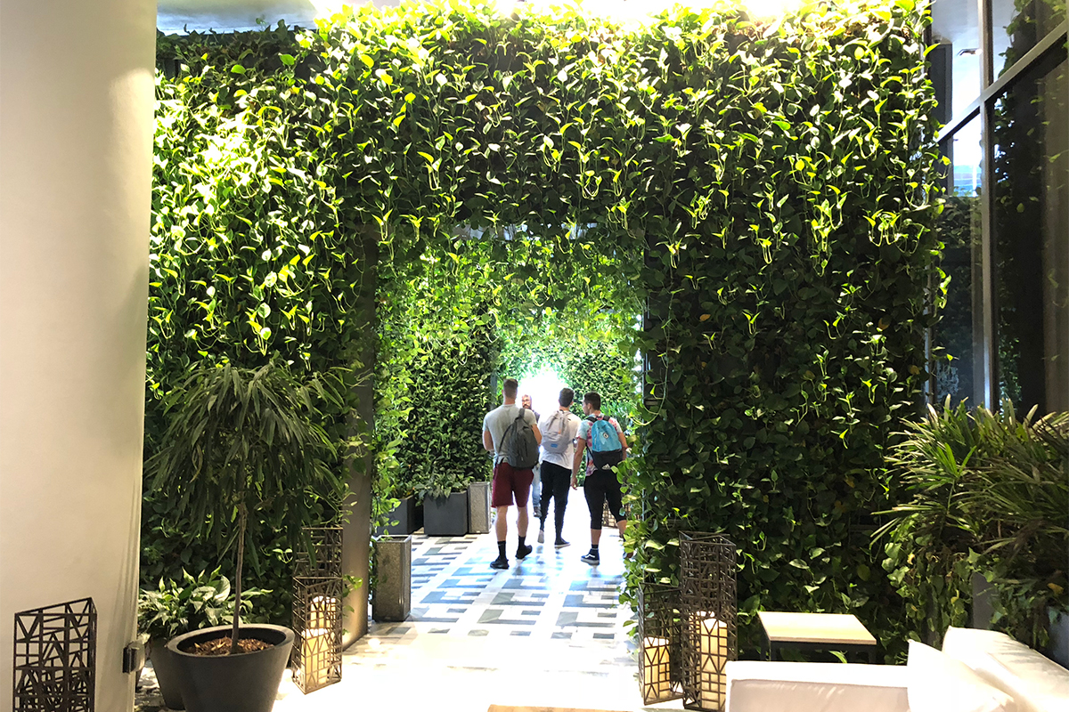 Archways of trailing golden pothos welcomes guests to SLS Lux in Miami, Florida.