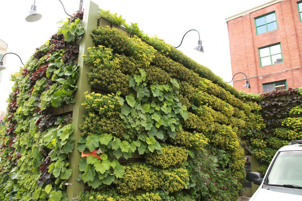 The B.O.B. Dumpster Enclosure Green Walls