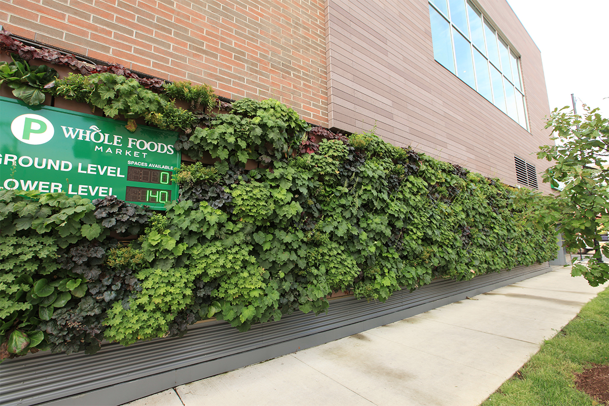 Living wall on a Whole Foods parking garage.