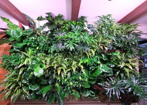 Lots of texture from a living wall with a mix of tropical plants.