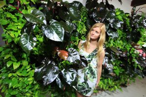 Philodendron with Pothos in Green Wall