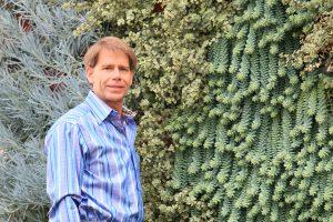 Tropical Succulents in Vertical Garden