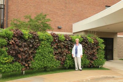 Green wall plants support mental and physical recovery for patients in healthcare settings.