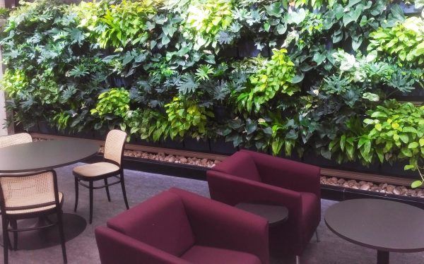 The green wall at Trent University provides a comfortable backdrop for students using the library.
