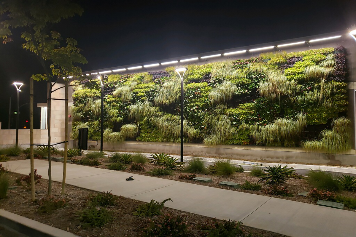 Large living wall with various shades of green and purple at a Starbucks drive-thru in Ventura, California