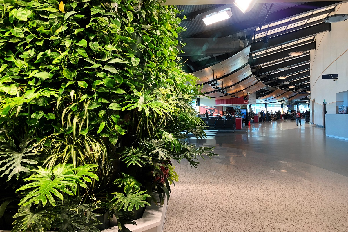 Close up of ATW's living wall with the airport gates in the background