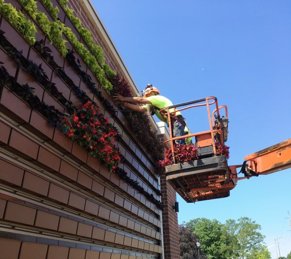 Installation of the 425 square foot wall completed in July of 2019 and includes 330 planter boxes with a mix of 6 different annual plants.