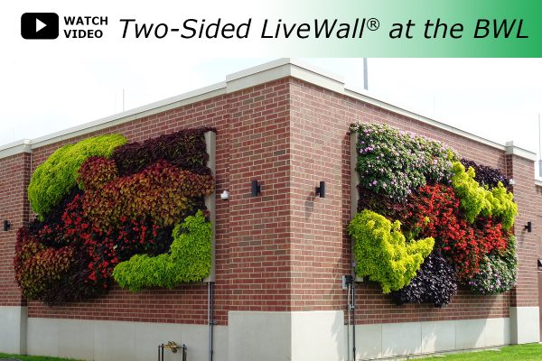 A two sided 425-square-foot green wall, installed with the LiveWall® Outdoor Living Wall System greens up the exterior of the new Lansing BWL substation.