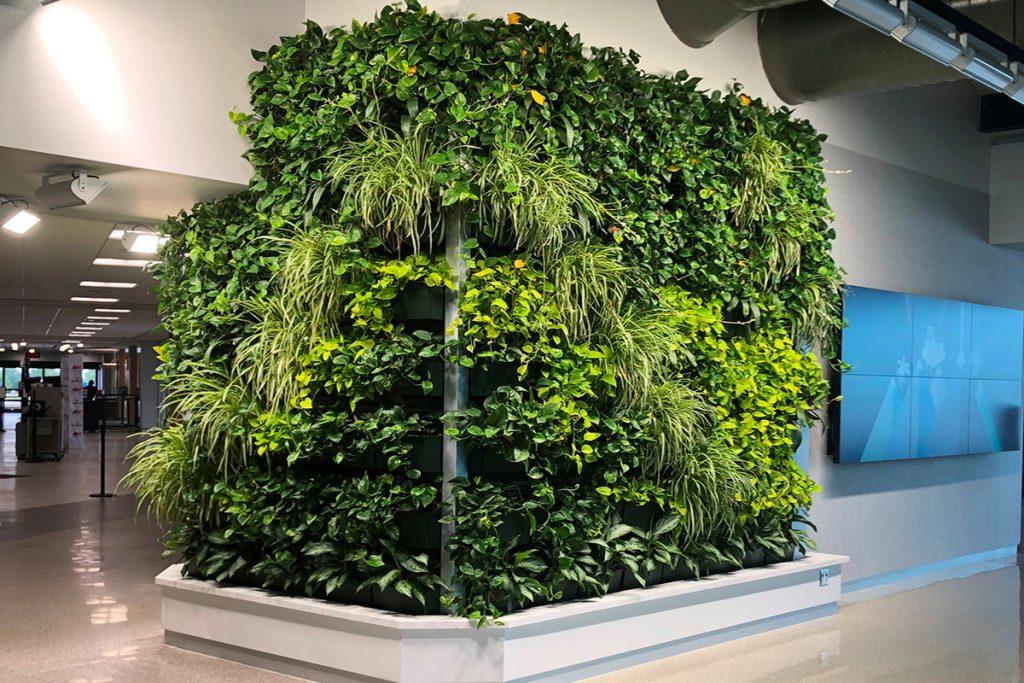 Appleton International Airport Indoor Living Wall