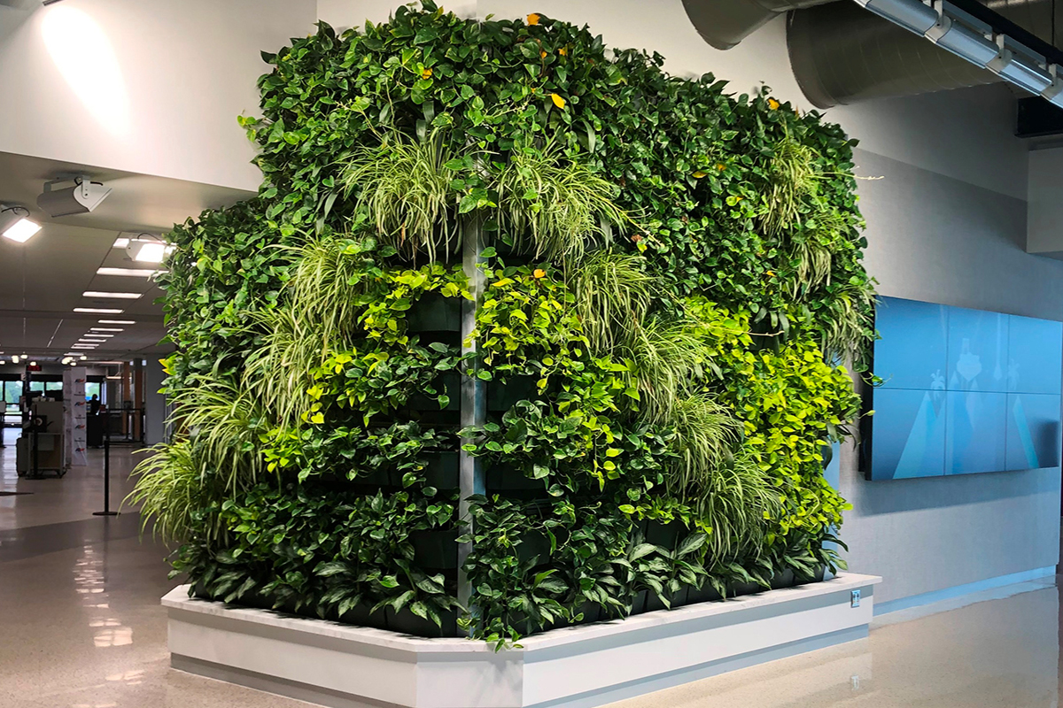 Lush, green tropical plants growing in the ATW living wall
