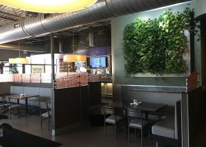 Living wall at The Green Well in Grand Rapids, MI