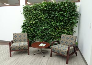 LiveWall Green Wall in Northern Illinois Hospice's Lobby