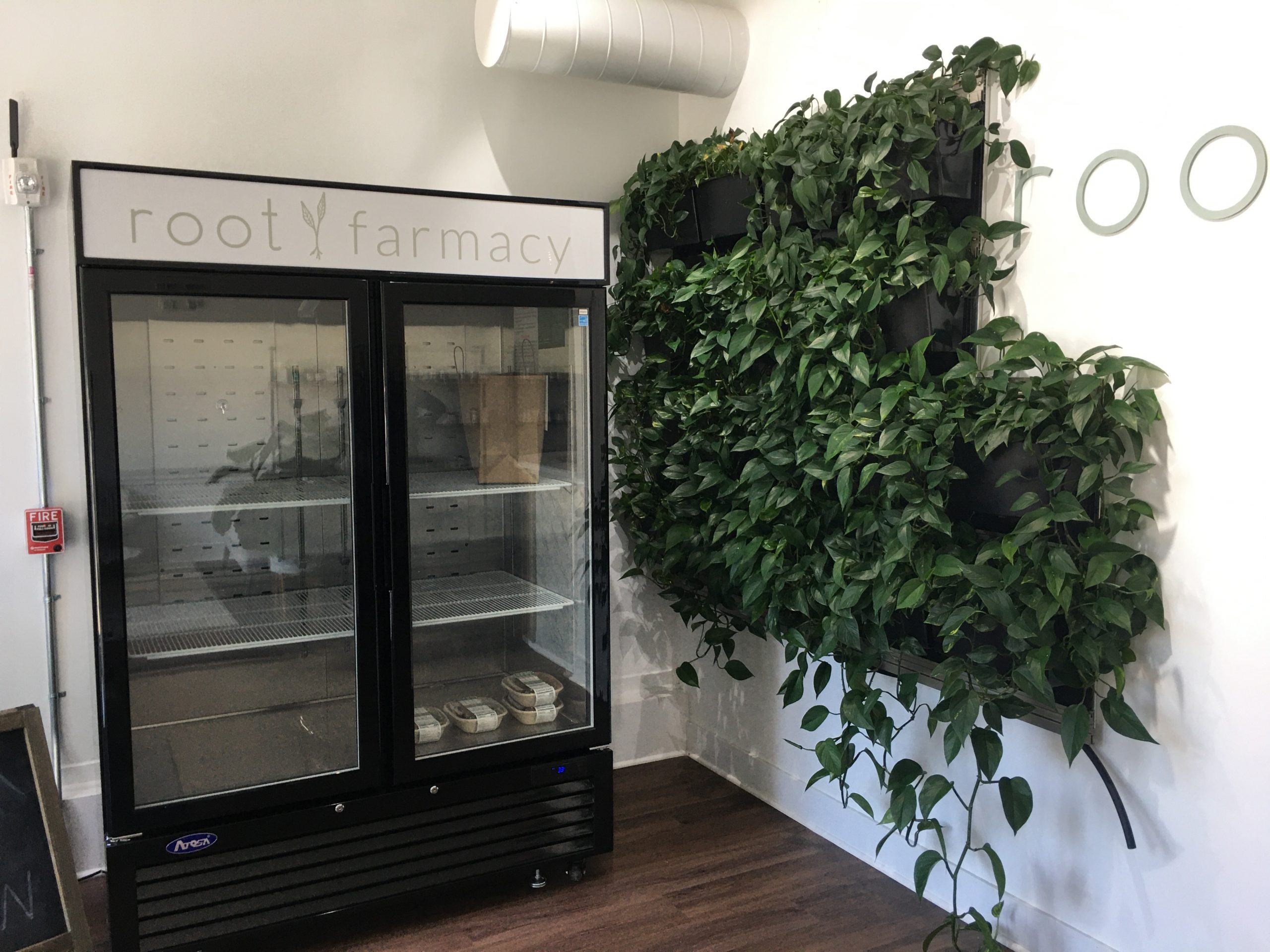 Root Functional Medicine's Green Wall Helps to Purify the Air in their Shop