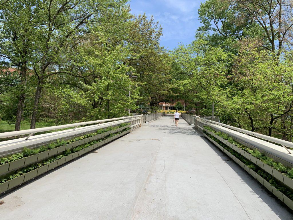 Michigan State University Green Walls